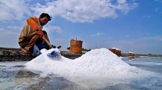 Wah.., Impor Garam Ternyata Sampai 3,7 Ton, Kementerian Kelautan Sebut Harusnya Cuma 2,2 Ton