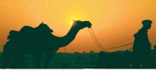 Kisah Abdurrahman bin Auf Borong Kurma Busuk Agar Jatuh Miskin karena Ingin Masuk Surga Lebih Duluan