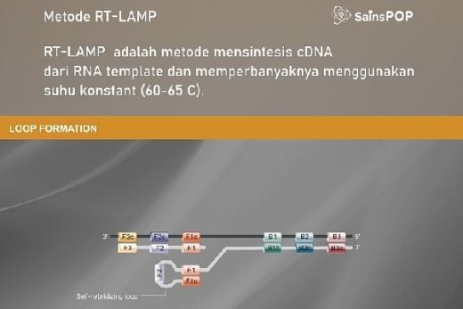 LIPI Gandeng PT Biosains Medika Indonesia Ciptakan RT LAMP
