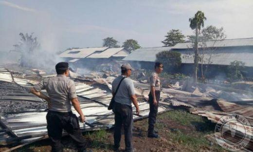 Peternakan di Bogor Terbakar, 40.000 Ekor Ayam Hangus Jadi Arang