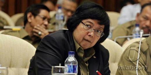 Parlemen Eropa Hina Sawit Indonesia, Menteri KLH Klarifikasi