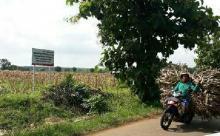 Masih Ingat Kampung Miliarder Tuban? Usai Borong Mobil Kini Warga Dihinggapi Kecemasan