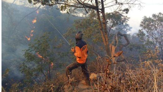 Ya Allah... Hutan Gunung Ciremai Terbakar, Belum Semua Pendaki Turun