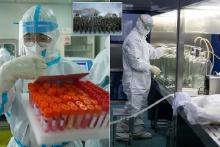 Penyelidik AS Ungkap Temuan Virus sebagai Model Upaya Perang