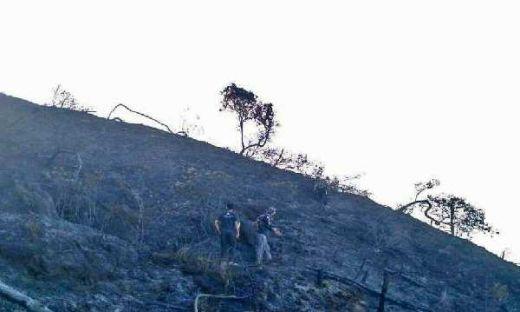 Heli Sempat Alami Kendala Teknis, Pemadaman Kebakaran Gunung Ciremai Terus Berlanjut