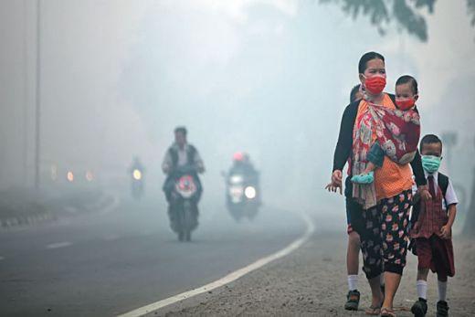 Asap Makin Parah, DPD PDI Perjuangan Riau Intruksikan DPC Bagikan Masker ke Masyarakat