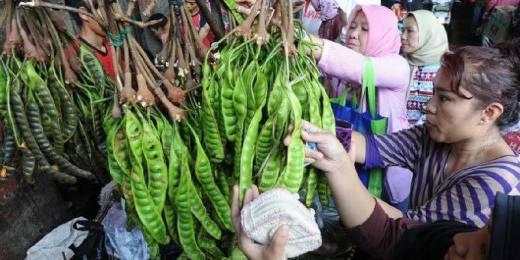 Alamak..! Jelang Idul Adha Bukan Cuma Jengkol yang Naik Harga, di Pasar Tradisional Harga Petai Capai Rp15 Ribu Perpapan