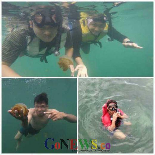 Bercengkerama dengan Ubur-ubur Jinak di Pulau Kakaban, Kalimantan Timur