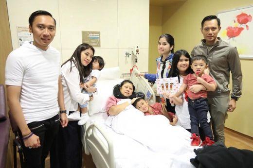 5 Fakta Leukemia, Penyakit Kanker Darah yang Diidap Ani Yudhoyono