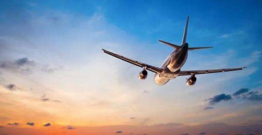 Diserang Sekumpulan Burung, Pesawat Ini Terpaksa Harus Berbalik Arah