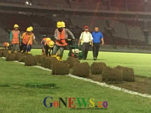 Rumput Stadion Utama Gelora Bung Karno Dipindahkan ke Arena Panahan
