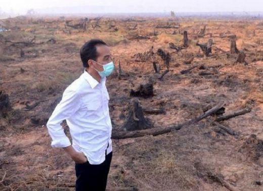 Sekjen ProDem: Jokowi Alumni Fakultas Kehutanan yang Gagal Atasi Kebakaran Hutan