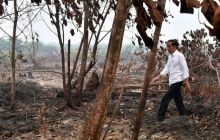 Tak Pakai Masker, Jokowi Blusukan di Lokasi Karhutla Riau
