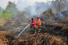 90 Persen Akibat Ulah Perusahaan, DPR Minta Dibikin UU Khusus Kebakaran Hutan