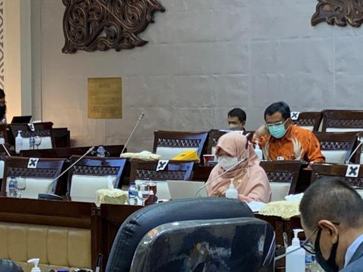 DPR Heran, Serapan Program Pemulihan Ekonomi hingga November Masih 55%