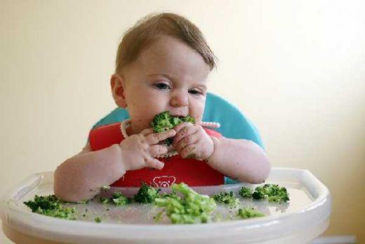 Mengenal Baby-Led Weaning, Saat Bayi Makan dengan Tangan Sendiri, Apa Manfaatnya?