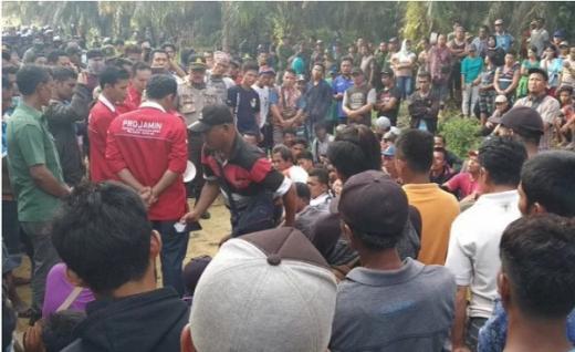 Konflik Perkebunan Sawit Masih Tinggi, Ini Rekomendasi Scale Up Untuk Pemda Riau