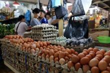 Harga Telur Ayam Merangkak Naik Jelang Akhir Tahun, Rakyat Kian Menjerit