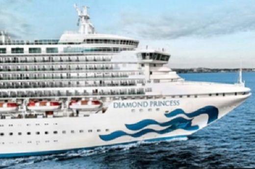 Fraksi PAN DPR RI Minta Pemerintah Lebih Bertindak Cepat Evakuasi WNI dari Diamond Princess