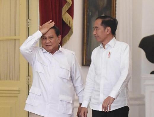 Jokowi Suruh Tanam Singkong, Prabowo Ini Menhan Apa Mentan Sih?