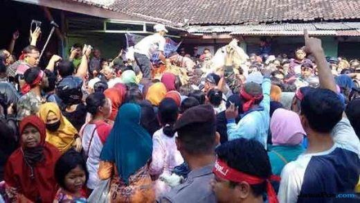 Aksi Protes Harga Anjlok, Peternak Bagi-bagi 8.000 Ekor Ayam Gratis di Solo dan 5.000 Ekor Ayam di Yogyakarta