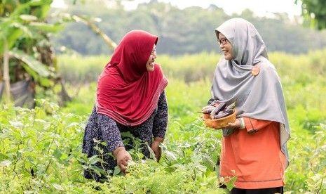Sehatkan Desa, Rumah Zakat Bentuk Program Kebun Gizi