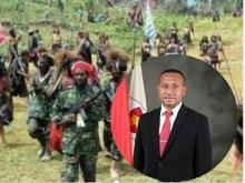 KKB Resmi Ditetapkan Jadi Teroris, Ini Kata Legislator Papua Yan Permenas Mandenas