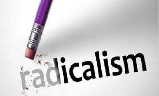 Maruarar Dorong DPR Undang Perwakilan Radikalis