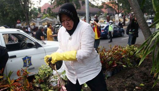 Nasdem Pingin Risma Pimpin Jakarta Gantikan Anies di Pilkada 2022 Mendatang