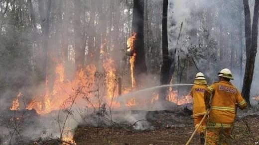 Kebakaran Lahan dan Hutan, DPR: Percuma Para Pelaku Pembakar Ditangkap Kalau Ujungnya SP3, Penegakan Hukum Masih Memble